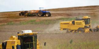 A Companhia Nacional de Abastecimento (Conab) realiza o webinar sobre o 1º Levantamento da Safra de Grãos 2020/2021.