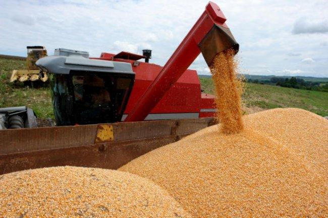 A Companhia Nacional de Abastecimento (Conab) realizará no dia 27 uma nova operação para contratar frete de milho. Dessa forma, irá a leilão