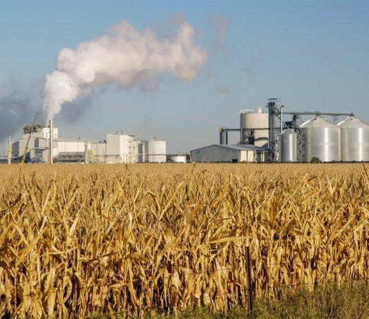 De acordo com a ANP, o consumo de etanol, entre janeiro e julho, foi 30,2% que mesmo período de 2018. Além disso, os números da Agência Nacional de Petróleo