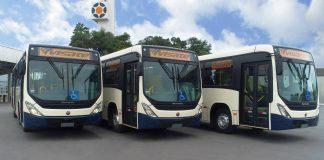 A Viação Santa Tereza (VISATE), concessionária do transporte público de Caxias do Sul (RS), adquiriu 32 novos ônibus Marcopolo.