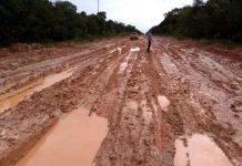 O Ministro da Infraestrutura, Tarcísio Gomes de Freitas, disse que as obras de asfaltamento do chamado trecho do meio da BR-319 começarão no próximo ano.
