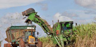 A produção de máquinas agrícolas no Brasil diminuiu 7,9% no primeiro semestre de 2019, no comparativo com o mesmo período do ano passado.