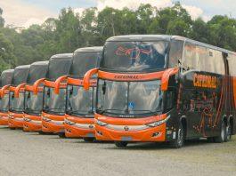 A Marcopolo vendeu 58 novos ônibus para a operadora de transportes Catedral, em Brasília. As unidades são divididas em 4 modelos da montadora