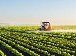 O faturamento com exportações do agronegócio em junho alcançou recorde de US$ 12,11 bilhões e isso representaalta de 25% em comparação com junho de 2020.