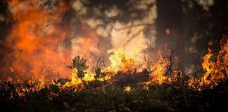 Dirigir em estradas próximas a focos de incêndios requer maior atenção.Ao longo dos meses de inverno, a estiagem e a seca no território brasileiro