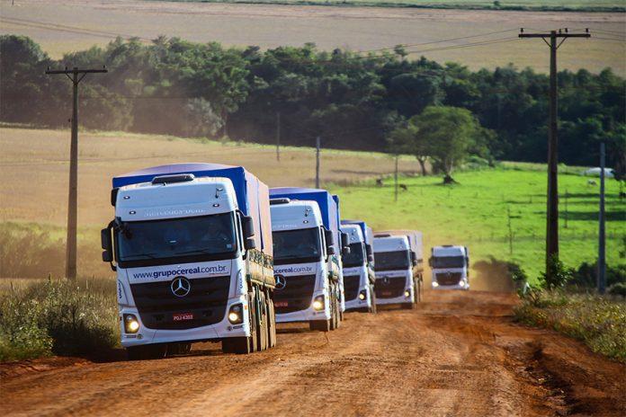De acordo com projeções do IBGE - Instituto Brasileiro de geografia e estatística, a safra brasileira de grãos, cereais e leguminosas deve somar 253,2 milhões d