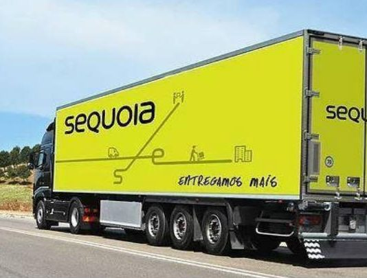 Sequoia investe R$ 3 mi e espera dobrar entregas na Black Friday