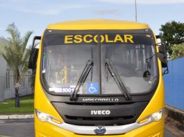 IVECO BUS - chassi 10-190.