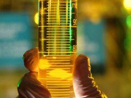 A mistura de biodiesel no diesel comercializado no Brasil passa a ser de 12% a partir de domingo, 1. Dessa forma, o aumento do combustível produzido a partir de óleos vegetais