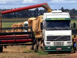 De acordo com informativo do o Instituto Mato-grossense de Economia Agropecuária (Imea), o frete para transporte de grãos em alguns trechos de Mato Grosso
