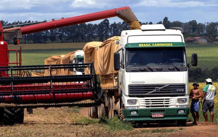 O frete para o transporte agrícola no Mato Grosso está mais caro em 2021. Dessa forma, os agricultores e exportadores do estrado estão pagando em média,
