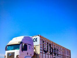 A JBS Transportadora anunciou nesta segunda-feira (13/07) o lançamento de um aplicativo para contratação digital de transporte de animais.