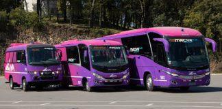 O grupo Civa, um dos principais operadores de transporte de passageiros do Peru, adquiriu 32 ônibus Marcopolo e Volare novos. Assim, os modelos serão usados