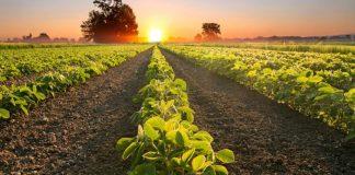 Agronegócio brasileiro bate recorde de exportações no mês de março totalizando um faturamento de US$ 11,57 bilhões, segundo Ministério da Agricultura.